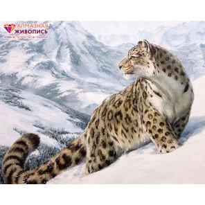 Снежный барс Алмазная вышивка мозаика АЖ-1520