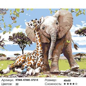 Количество цветов и сложность Слоненок с другом Раскраска картина по номерам на холсте KTMK-KTMK-37215