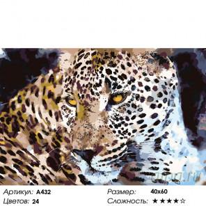 Количество цветов и сложность Самый красивый Раскраска картина по номерам на холсте A432