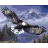 Парящий орлан Раскраска картина по номерам на холсте KTMK-60370