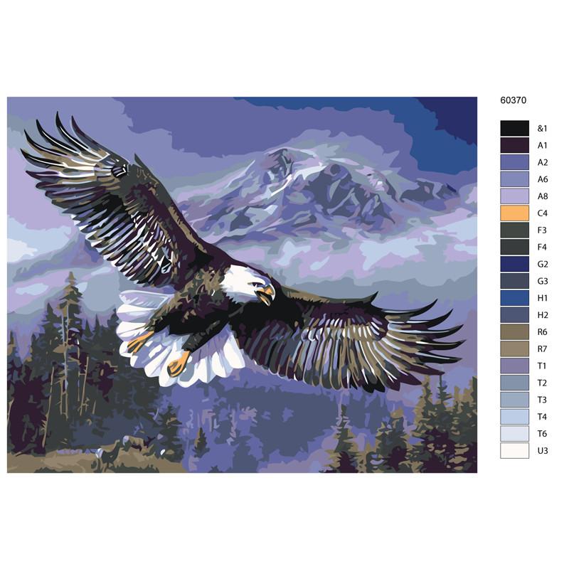 KTMK-60370 Парящий орлан Раскраска картина по номерам на ...