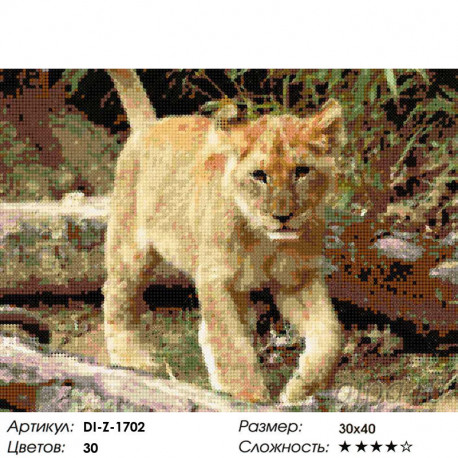 Смелый львенок Алмазная вышивка мозаика DI-Z-1702