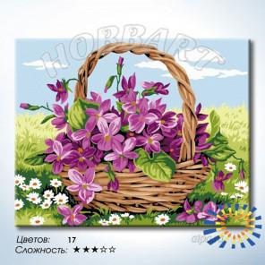 Луговой букет Раскраска по номерам на холсте Hobbart