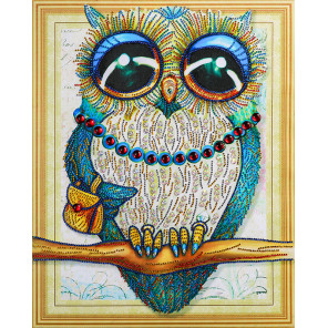 Сова девочка Алмазная вышивка мозаика 5D Color Kit FKU004