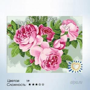 buket-persikovih-roz-raskraska-hobbart
