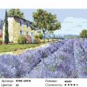 Количество цветов и сложность Лаванда Прованса Раскраска картина по номерам на холсте KTMK-65418