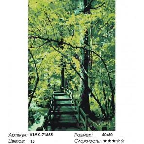 Мостик в лесу Раскраска картина по номерам на холсте KTMK-71655