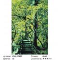 Количество цветов и сложность Мостик в лесу Раскраска картина по номерам на холсте KTMK-71655