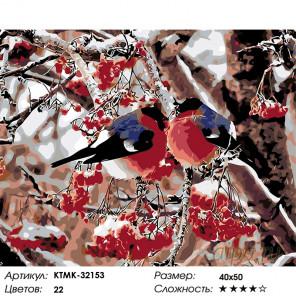 Количество цветов и сложность Снегири на рябине Раскраска картина по номерам на холсте KTMK-32153
