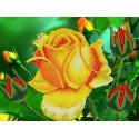 Роза Набор для вышивки бисером Каролинка