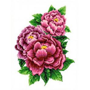 Розовые пионы Набор для вышивания Каролинка