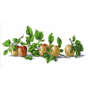 Натюрморт с яблоками Набор для вышивания Каролинка