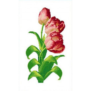 Тюльпаны Канва с рисунком для вышивки Каролинка