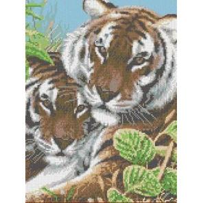 Тигры Канва с рисунком для вышивки Каролинка