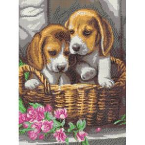 Чудесный подарок Канва с рисунком для вышивки Каролинка