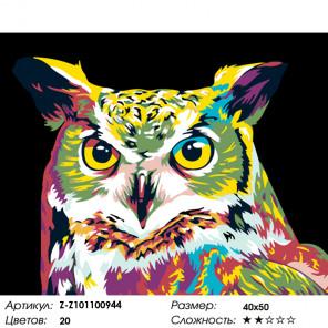 Количество цветов и сложность Красочная сова Раскраска картина по номерам на холсте Z-Z101100944