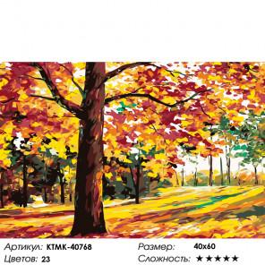 Вековой лес Раскраска картина по номерам на холсте KTMK-40768
