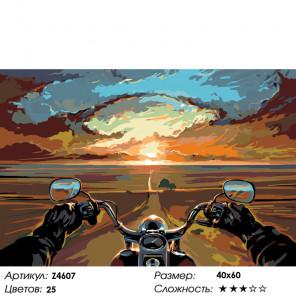 Количество цветов и сложность Беспечный ездок Раскраска картина по номерам на холсте Z4607