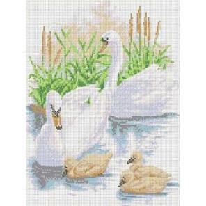 Лебединое семейство Канва с рисунком для вышивки бисером