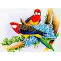 Попугаи Канва с рисунком для вышивки бисером