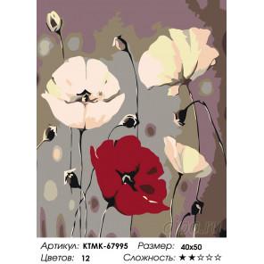 Трепет маков Раскраска картина по номерам на холсте KTMK-67995