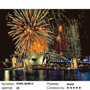 Количество цветов и сложность Салют в Сиднее Раскраска картина по номерам на холсте KTMK-864413
