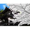 Сакура Канва с рисунком для вышивки бисером