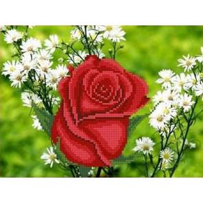Роза в ромашках Канва с рисунком для вышивки бисером