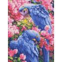 Голубые Ара Канва с рисунком для вышивки Каролинка