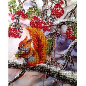 Белочка Набор для вышивки бисером FeDi