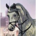 Лошадь Набор для вышивки бисером FeDi
