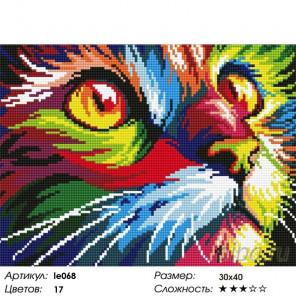 Радужный кот Алмазная мозаика на подрамнике