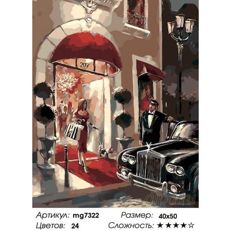 Количество цветов и сложность Красная дорожка Раскраска картина по номерам на холсте MG7322