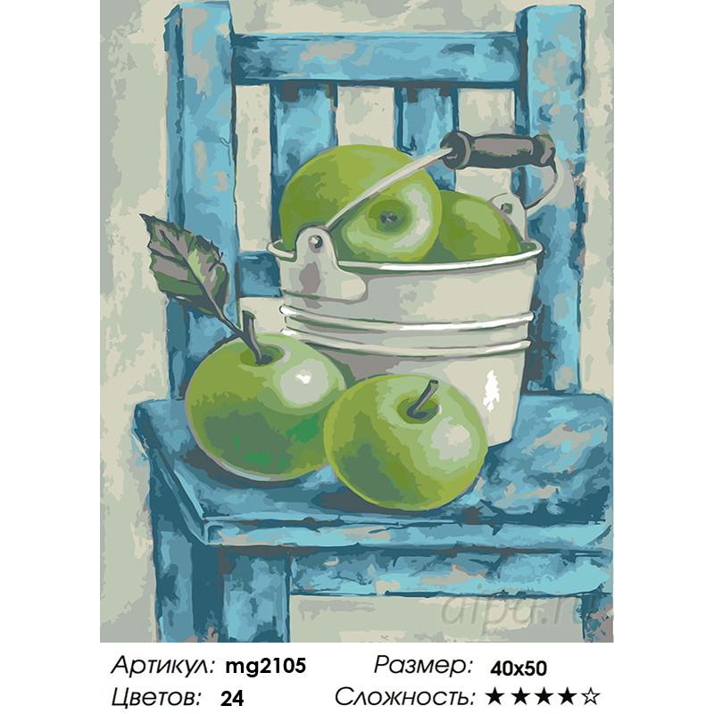 MG2105 Натюрморт с зелеными яблоками Раскраска картина по ...