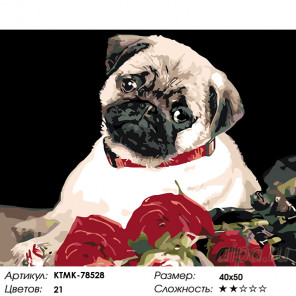 Количество цветов и сложность Мопс с розами Раскраска картина по номерам на холсте KTMK-78528