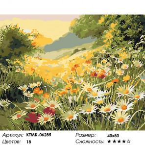 Количество цветов и сложность Июньский вечер Раскраска картина по номерам на холсте KTMK-06285