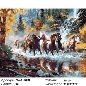 Количество цветов и сложность Табун на реке Раскраска картина по номерам на холсте KTMK-85845