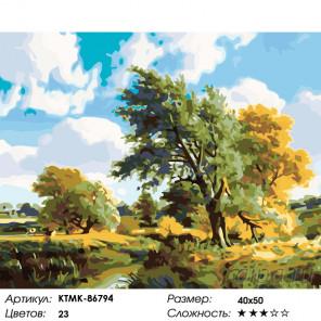 Ветренный день Раскраска картина по номерам на холсте KTMK-86794