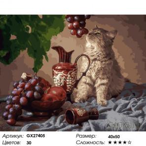 Количество цветов и сложность Кот и виноград Раскраска картина по номерам на холсте GX27405