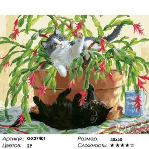 Количество цветов и сложность Игра с декабристом Раскраска картина по номерам на холсте GX27401