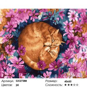 Количество цветов и сложность Сладкий сон Раскраска картина по номерам на холсте GX27388