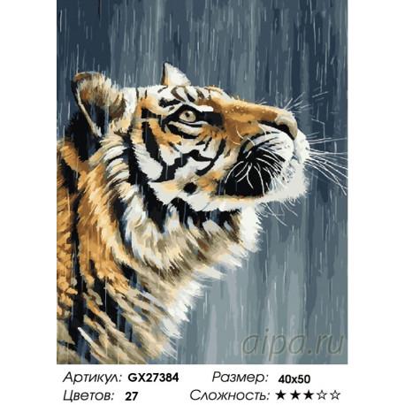 Количество цветов и сложность Тигр под дождем Раскраска картина по номерам на холсте GX27384