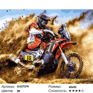 Количество цветов и сложность Гонки на мотоцикле Раскраска картина по номерам на холсте GX27374