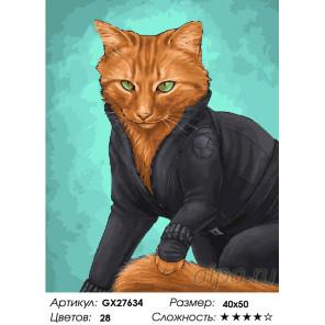 Количество цветов и сложность Бойцовый кот Раскраска картина по номерам на холсте GX27634
