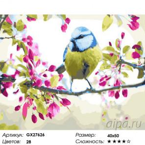Количество цветов и сложность Пение птиц Раскраска картина по номерам на холсте GX27626