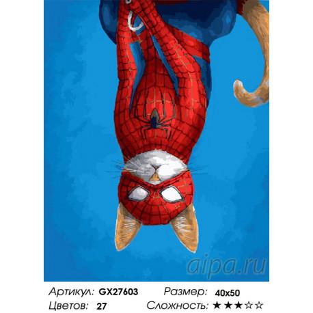 Количество цветов и сложность Кот супергерой Раскраска картина по номерам на холсте GX27603