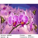 Цветок орхидеи Раскраска картина по номерам на холсте