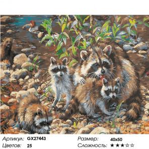 Количество цветов и сложность Семья енотов Раскраска картина по номерам на холсте GX27443