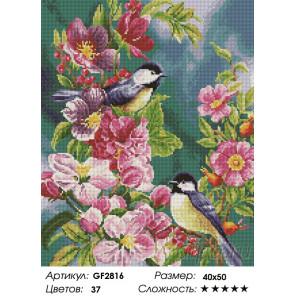 Количество цветов и сложность Буйство красок Алмазная вышивка мозаика Painting Diamond GF2816