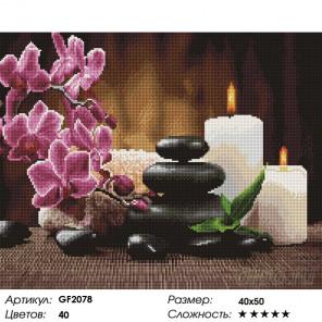 Количество цветов и сложность Магия камней Алмазная вышивка мозаика Painting Diamond GF2078